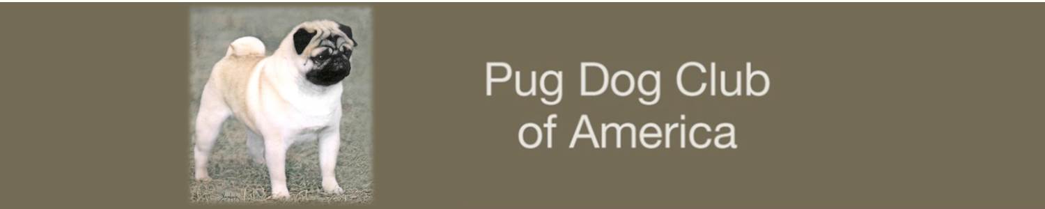 Welcome to the Pug Dog Club Of America